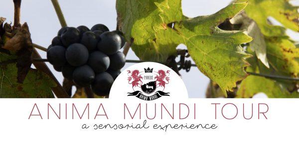 Anima-Mundi-Tour-19-maggio-2016-Degustazione-Vino-Visita-Guidata
