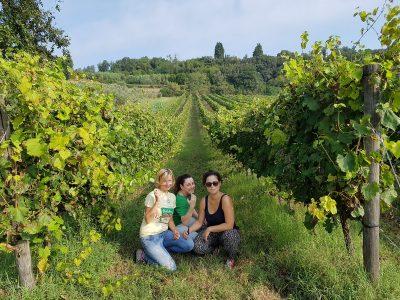 donne vino toscano