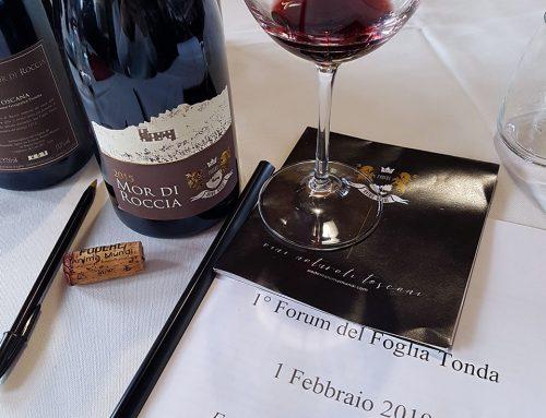 Vitigno Foglia tonda: l'uva e il vino in Toscana