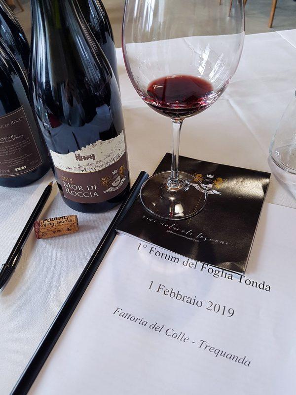 vitigno foglia tonda vino toscana