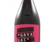 Gavagai 2019 Canaiolo